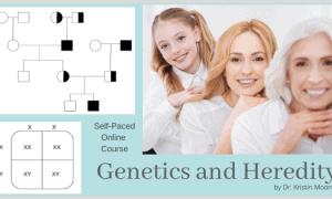 Genetics and Heredity self paced online course