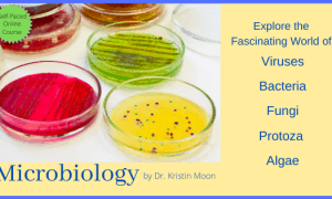 Microbiology self-paced online course