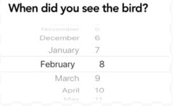 The second question the Merlin app asks is when you saw the bird you wish to identify