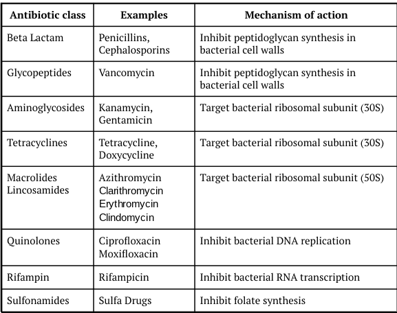Classes of antibiotics, examples from each class, and the mechanism of action by which each class targets bacterial infections.