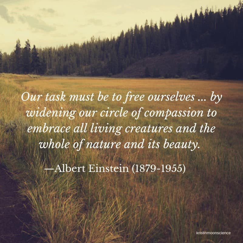 Our task must be to free ourselves ... by widening our circle of compassion to embrace all living creatures and the whole of nature and its beauty.—Albert Einstein (1879-1955)