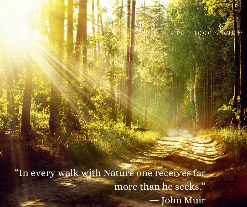 John Muir nature quote