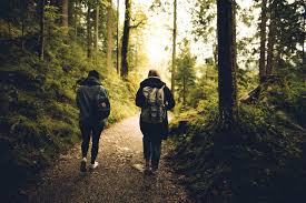 Walking may free up the brain's attention span, allowing more imaginative thought to take place.