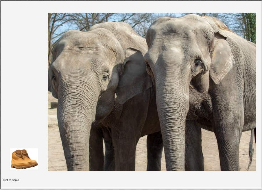 We can have a pair of shoes and we can have a pair of elephants:  we have two of each (that's what pair means), but the two pairs definitely don't weigh the same.