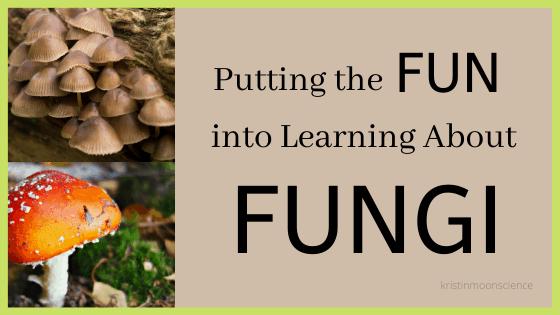 Fun ways to learn about fungi