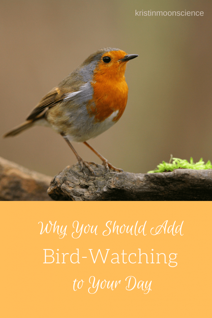 Not only is bird-watching fun, it's also good for you!  Learn the benefits of bird-watching and some of the best resources for identifying birds, both by sight and by sound, including one of the best FREE resources for identifying birds:  Merlin Bird ID.