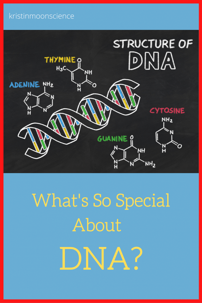 What is DNA? Why is so important and how does it function in ALL living things?  Included are videos, ideas for optional experiments for at-home DNA extraction (you can extract YOUR OWN DNA!), and lots of links with more ideas for taking your learning farther (origami DNA, DNA coloring sheets, online simulations, etc. ).